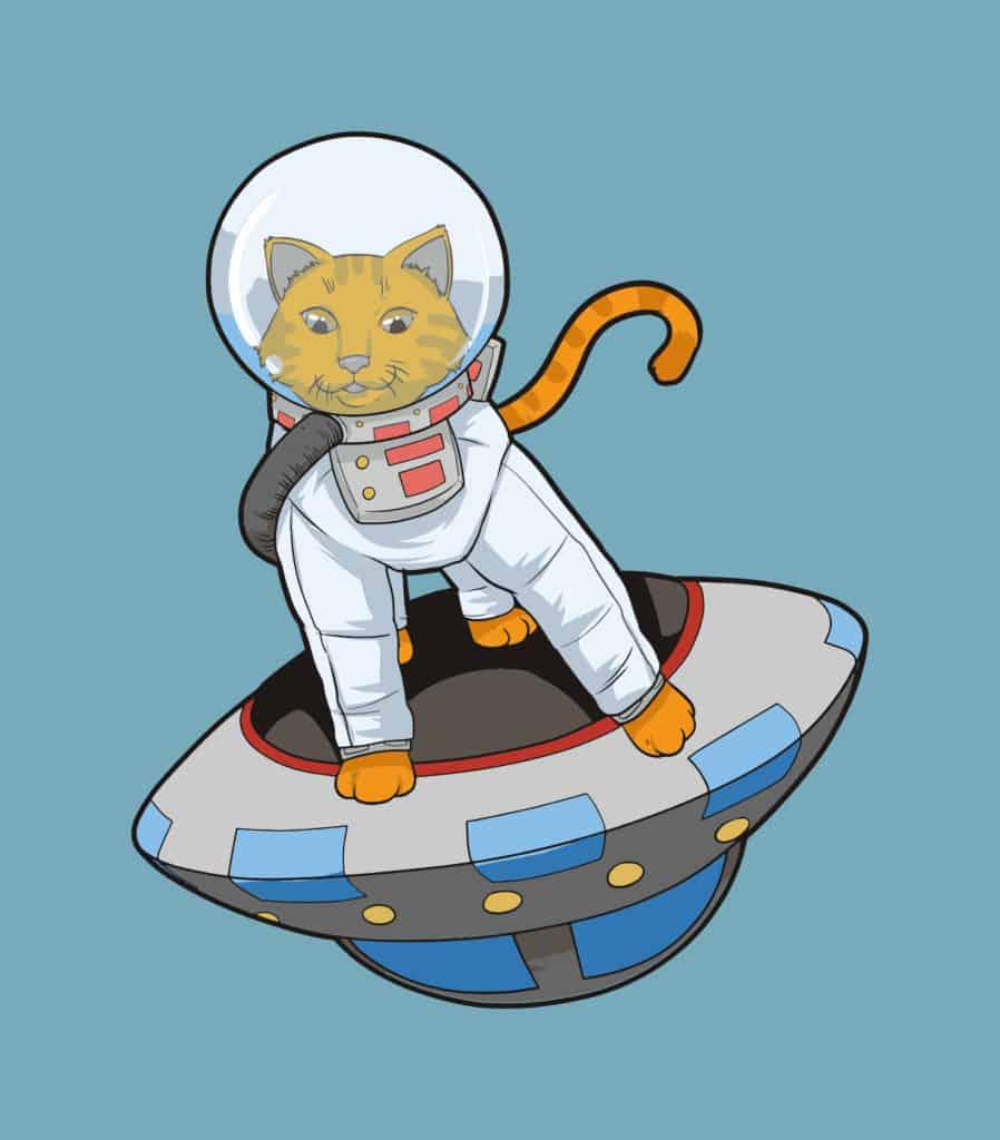 Astrocat 1