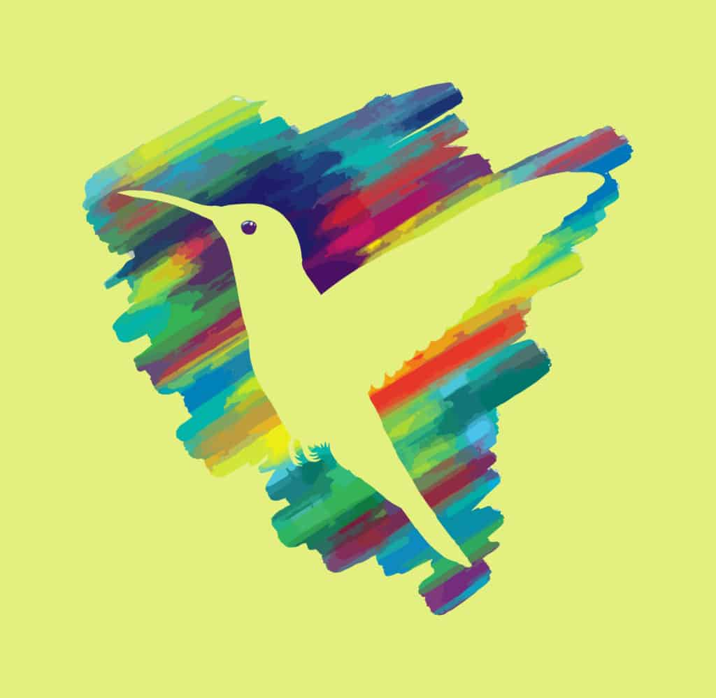 Humming bird in Colors