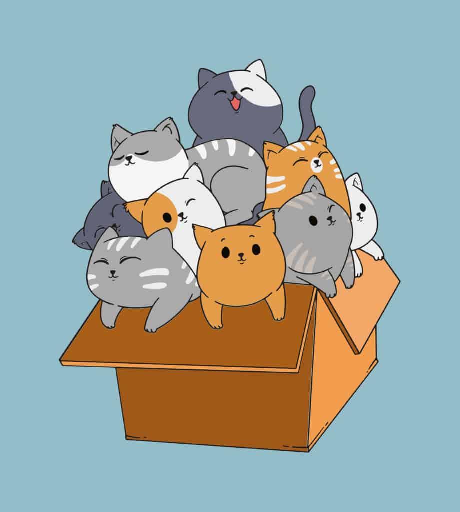 cats in a box design