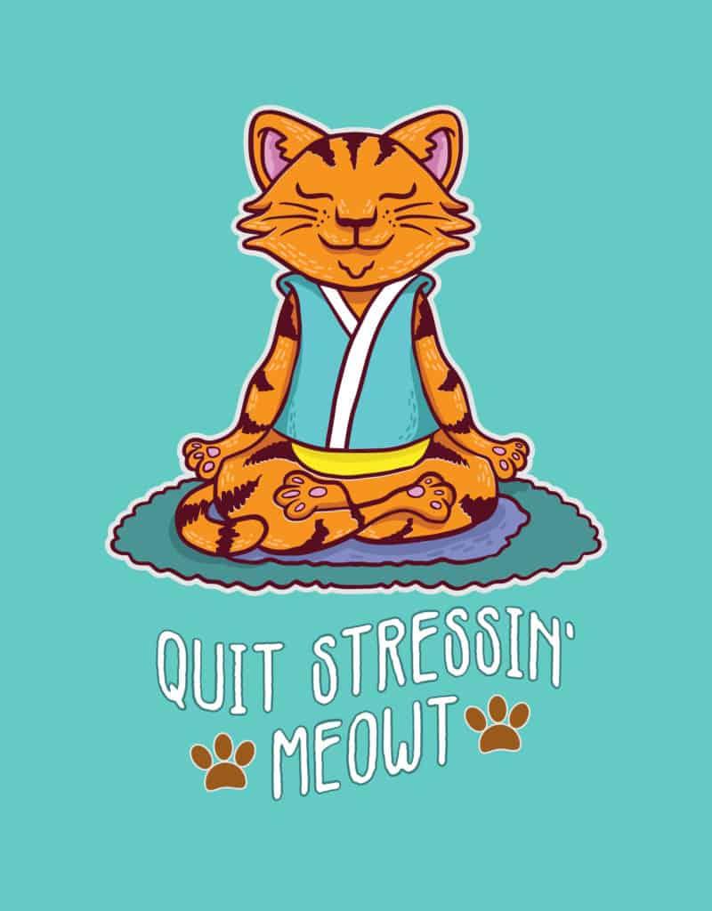 meditating cat tshirt design